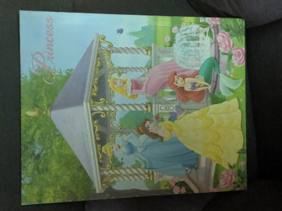 Disney princess canvas