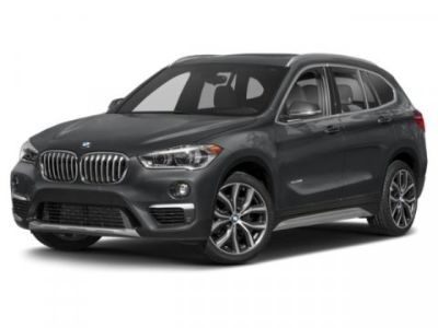 2019 BMW X1 xDrive28i (Mineral White Metallic)