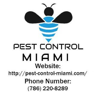 Expert Pest Control Miami