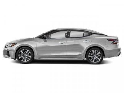 2019 Nissan Maxima SV (Brilliant Silver Metallic)