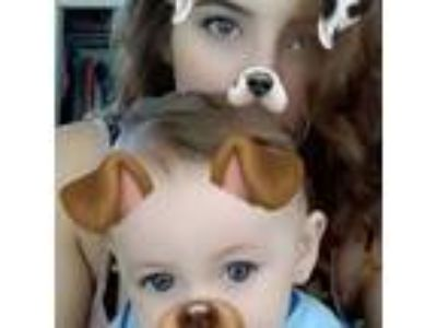 Stay at home mommy with a 19 month old son, Dominic, looking to help out other