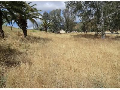 craigslist housing classifieds in lone pine california claz org rh lonepine claz org