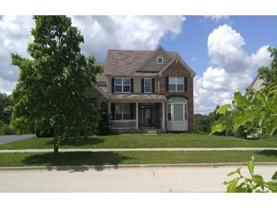 Preforeclosure Property in Elgin, IL 60124 - Wagon Rd