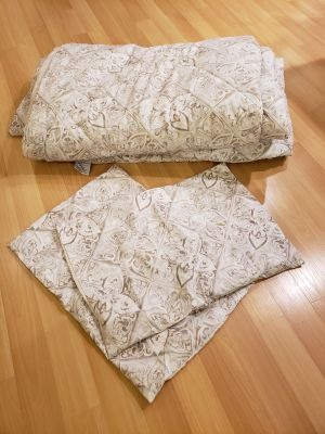Really cute queen comforter and 2 shams