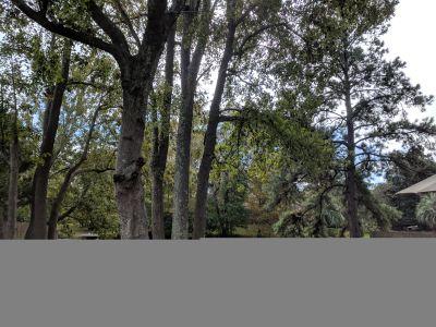 Single-family home Rental - 658 Williamson Drive