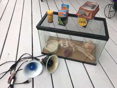 Reptile cage and accessories