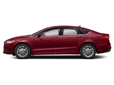2019 Ford Fusion SE FWD (FCTP) (Ruby Red Metallic Tinted Clearcoat)