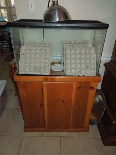 Reptile Aquarium 20 gallons and stand