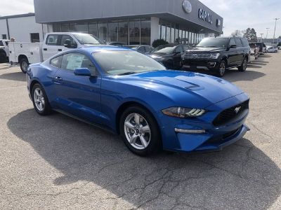 2019 Ford Mustang EcoBoost (Blue Metallic)