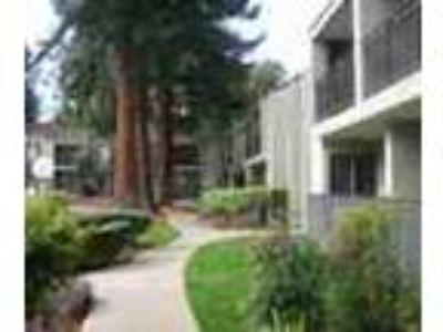 Ideal Bay Area Location Huge Amenity Packages