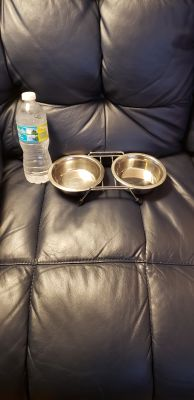 Little dog bowl ser..stainless steel. Euc...dog or cat bowls