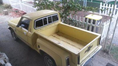 1979 luv truck