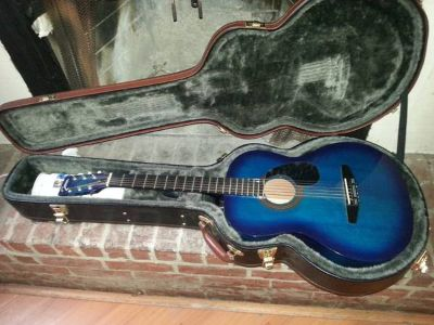 Johnson Guitar qith hard case and stand
