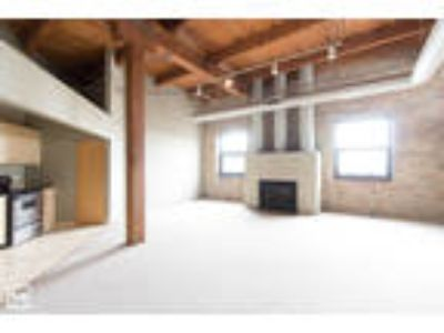 FULTON RIVER: Loft Style, HUGE, Roof Deck, Exposed Brick, Fireplace