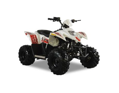 2018 Hisun Axis 110 Sport ATVs Sturgeon Bay, WI