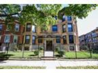 Chicago Four BR One BA, 6547 South Ellis Avenue 1N