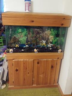 Fish tank (NO FISH INCLUDED)