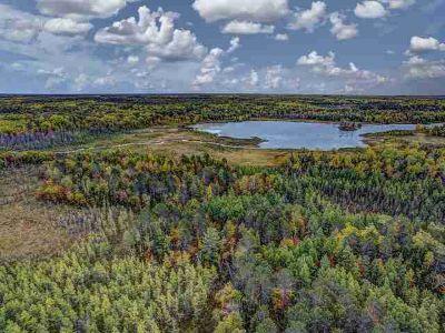 On Evergreen Ln Lac Du Flambeau, ACREAGE ON MULTIPLE LAKES -