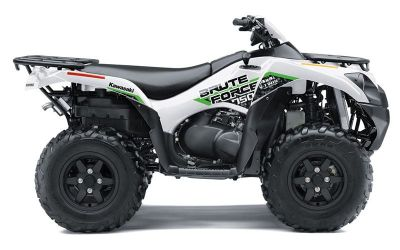 2019 Kawasaki Brute Force 750 4x4i EPS ATV Sport Utility White Plains, NY