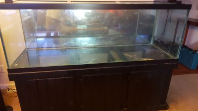 180 gal Aquarium and stand pick up in Columbia