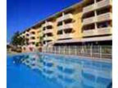 2bed2bath In North Miami Pool Gym Near Beach