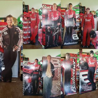 Dale Earnhardt jr collective lifesize standups