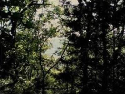 0.6800 acres of land for sale in Holiday Island, Arkansas, United States