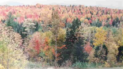 0 Gore Road Lancaster, 40 Acres abutting national forest.