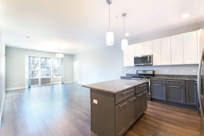 Jaw Dropping Glenview New Construction 1 bed / 1.5 bath Condo Quality Gem!