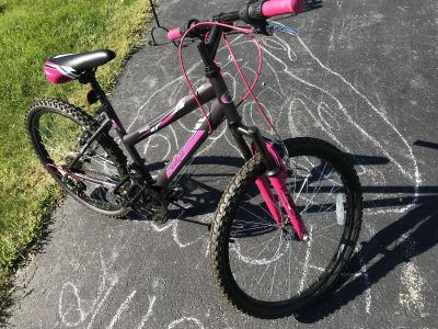 Large Girls Bike Excellent Condition
