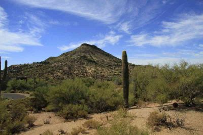 39967 N 98TH Way Scottsdale, Exceptional custom homesite