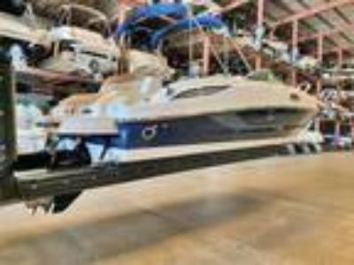 2014 Sea Ray 260 Sundeck