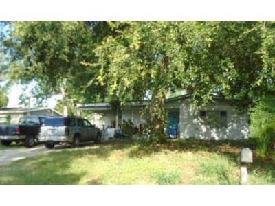 2 Bed 1 Bath Foreclosure Property in Paisley, FL 32767 - Golden Isle Dr