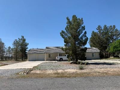 Preforeclosure Property in Pahrump, NV 89048 - W Hickory St