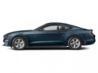 2019 Ford Mustang EcoBoost (Velocity Blue Metallic)