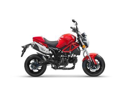 2018 SSR Motorsports Razkull 125 Sport Motorcycles Dayton, OH