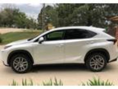 2015 Lexus NX-300h Luxury in Calhan, CO