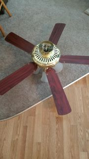 4 light ceiling fan with double use blades