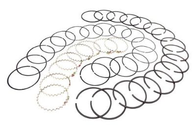 Find Omix-Ada 17430.30 - 1979 Jeep CJ Piston Ring Set motorcycle in Suwanee, Georgia, US, for US $80.04