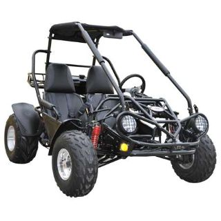 2015 TrailMaster 150 XRS Other Go-Karts Dearborn Heights, MI