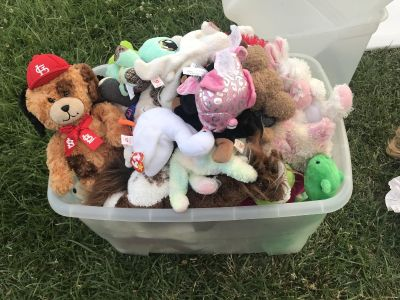 Tub of clean stuffed animals, Ganz, Ty, several Cardinals, Build a Bear...All For $15