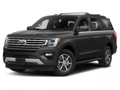 2019 Ford Expedition Platinum (black)