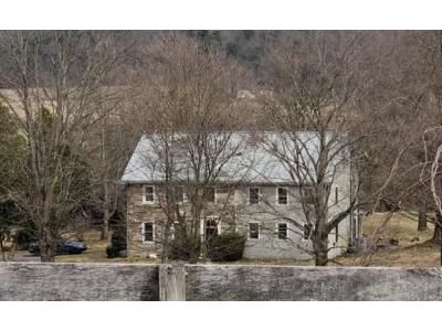 4 Bed 2.5 Bath Foreclosure Property in Danville, PA 17821 - Frosty Valley Rd