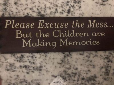 Please Excuse The Mess... Wall Sign