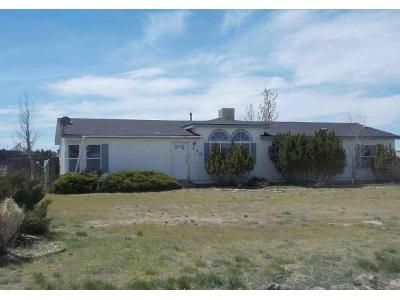 3 Bed 2 Bath Foreclosure Property in Spring Creek, NV 89815 - Sage Glen Dr