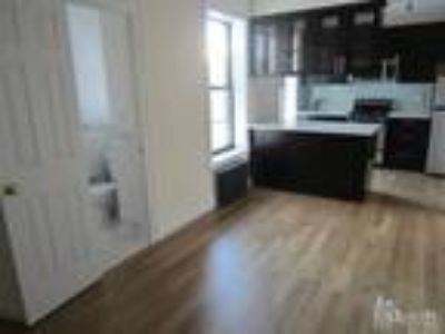OH 4-6pm Totally Bright Penthouse, Gut Renovated, South Expos Chef's Kitchen