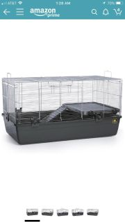 Looking for guinea/ hamster cage and accessories