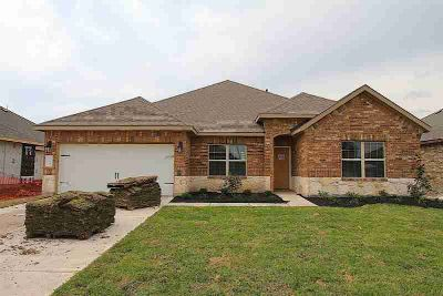 709 Sugar Trail Drive League City Four BR, DR HORTON New