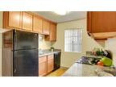 Accolade Apartment Homes - 3 BR 2 BA (D)