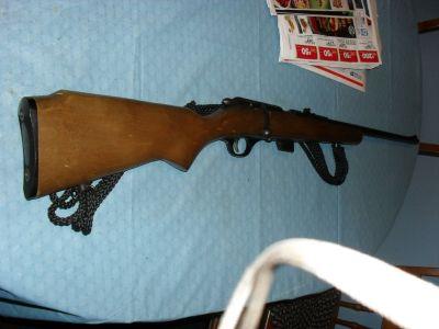 Glenfield .22 rifle M25